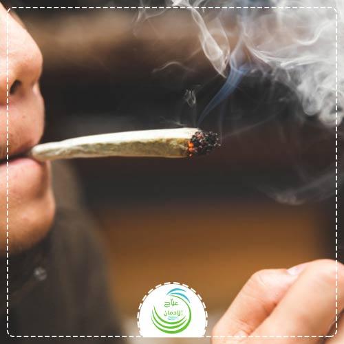 ماذا يحدث لجسم الإنسان عندما يتعاطى الماريجوانا؟
