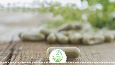 Photo of علاج الإدمان بالأعشاب