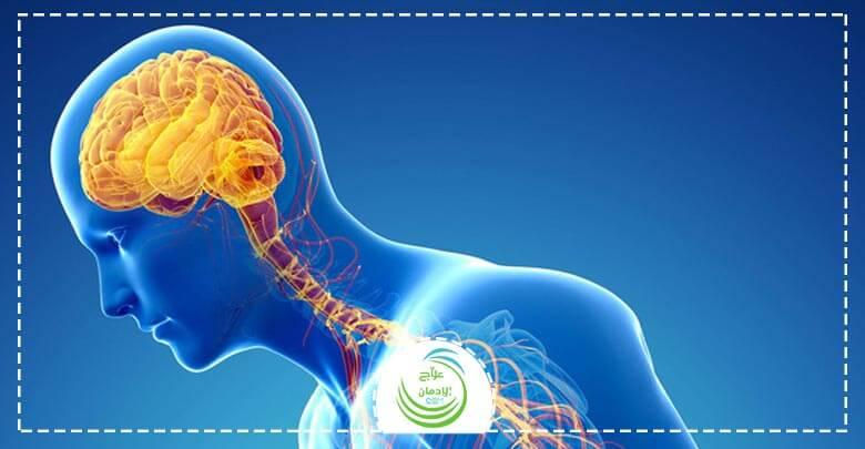 ما هي آثار المخدرات علي المخ